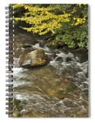 Autumn Stream 6149 Spiral Notebook