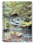 Autumn Streams Spiral Notebook