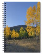 Autumn Sunset In Forest Of Golden Aspen Spiral Notebook
