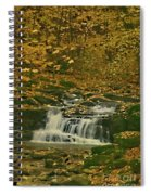 Autumn Surrounded In Color Spiral Notebook