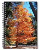 Autumn Tree Spiral Notebook