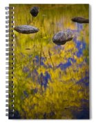 Autumn Tree Reflections With Rocks On The Muskegon River Spiral Notebook