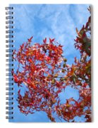 Autumn Trees Art Prints Blue Sky White Clouds Spiral Notebook