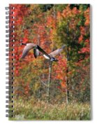 Autumn Vermont Geese And Color Spiral Notebook