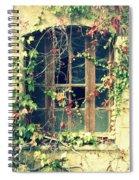 Autumn Vines Across A Window Spiral Notebook