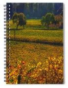 Autumn Vineyards Spiral Notebook