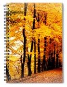 Autumn Walk In Belgium Spiral Notebook