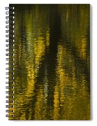 Autumn Water Reflection Abstract I Spiral Notebook