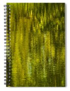 Autumn Water Reflection Abstract IIi Spiral Notebook