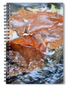 Autumn Waters Spiral Notebook
