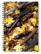 Autumnal Melody Spiral Notebook