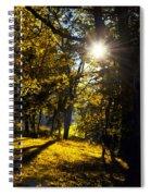 Autumnal Morning Spiral Notebook