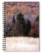 Autumnfield 2 Spiral Notebook