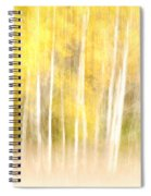 Autumns Abstract Spiral Notebook