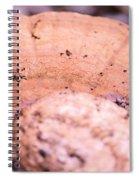 Autumn's Abstract Mushroom Spiral Notebook