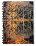 Autumns Art Spiral Notebook