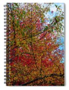 Autumns Beauty Spiral Notebook