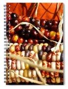 Autumn's Bounty Spiral Notebook