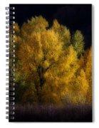 Autumn's Last Hurrah Spiral Notebook