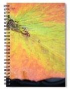 Autumn's Pastel Pallet Spiral Notebook