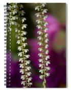 Ava's Fragile Flower Spiral Notebook