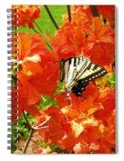 Azalea And Butterfly 1 Spiral Notebook