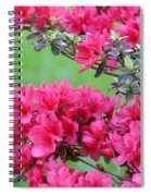 Azalea Spiral Notebook
