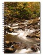 Babcock Creek Scene 4 Spiral Notebook