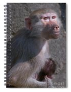 Baboon Carrying Her Baby Spiral Notebook