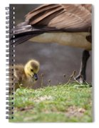 Baby Back Spiral Notebook