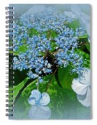 Baby Blue Lace Cap Hydrangea Spiral Notebook