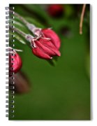 Baby Buds Spiral Notebook