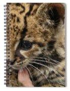 Baby Jaguar Spiral Notebook