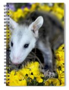 Baby Opossum In Flowers Spiral Notebook