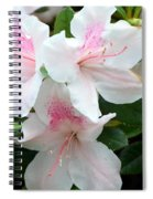 Baby Pink Azaleas Spiral Notebook