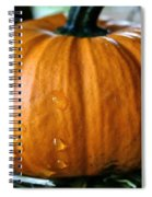 Baby Pumpkin Tears Spiral Notebook