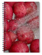Baby Reds With A Splash Spiral Notebook