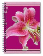 Baby Shower Invitation - Pink Stargazer Lily Spiral Notebook