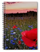 Bachelor Buttons And Poppies Spiral Notebook