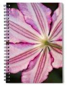 Backlit Clematis Spiral Notebook