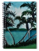Backyard Palms Spiral Notebook