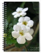 Bacopa Named Snowtopia Spiral Notebook