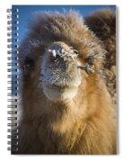 Bactrian Camel Camelus Bactrianus Spiral Notebook