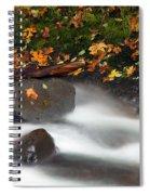 Balance Of The Seasons Spiral Notebook