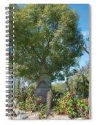 Balboa Tree Spiral Notebook