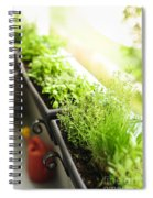 Balcony Herb Garden Spiral Notebook