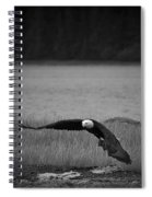 Bald Eagle Take Off Series 4 Of 8 Spiral Notebook