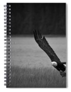 Bald Eagle Take Off Series 5 Of 8 Spiral Notebook