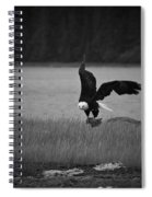 Bald Eagle Take Off Series 6 Of 8 Spiral Notebook