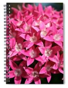 Ball Of Stars Spiral Notebook